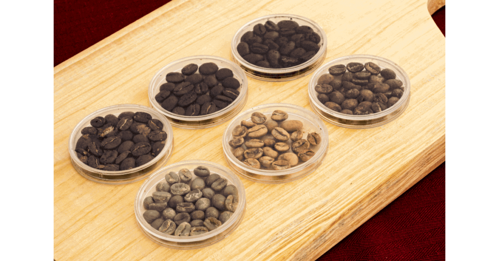 The coffee roasting stages, showing green coffee beans, light roasts and dark roasts